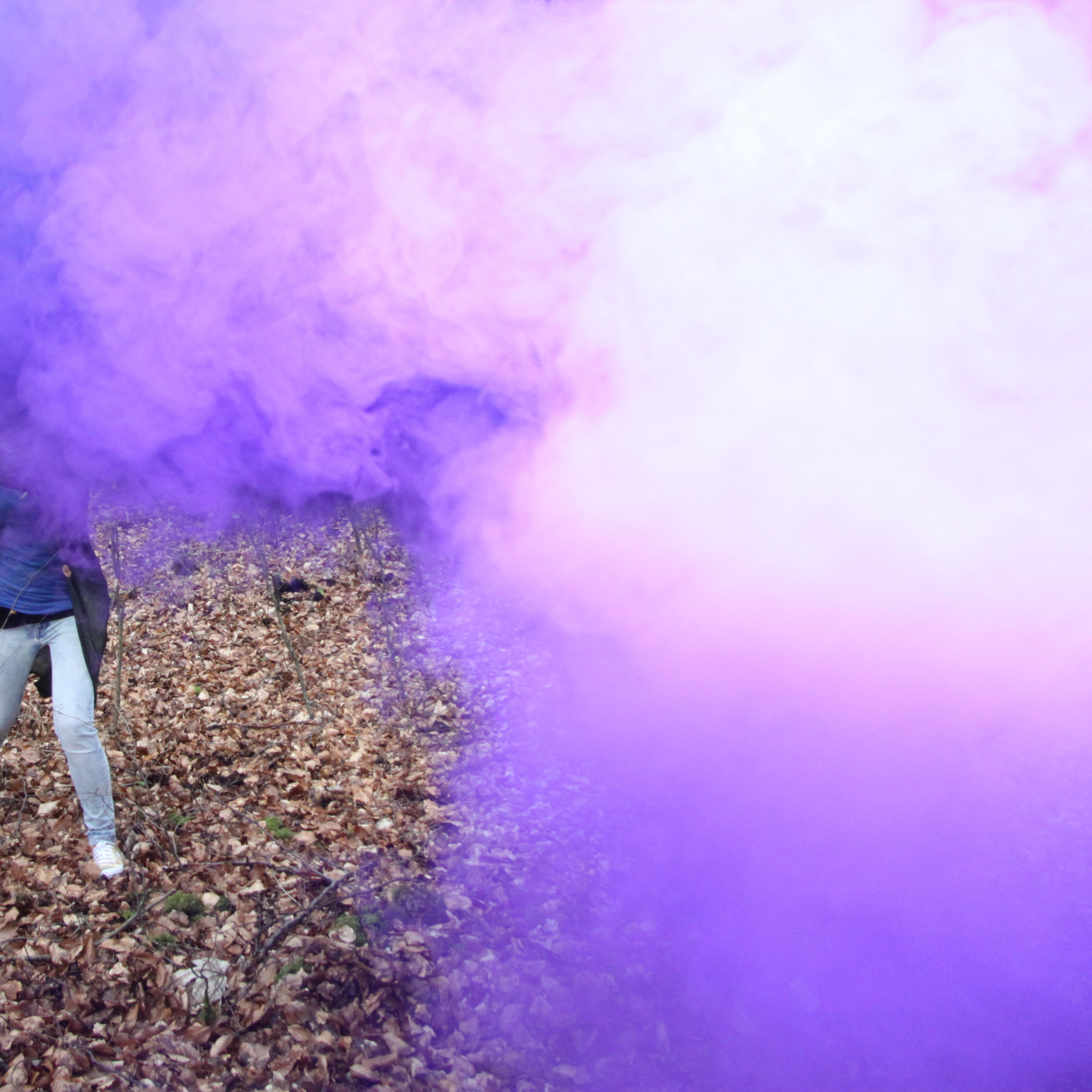 rauch1